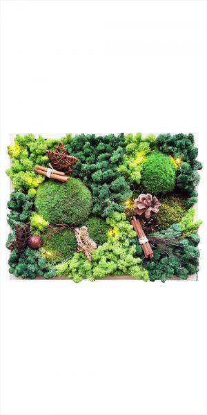 Tablou vegetal cu licheni stabilizați