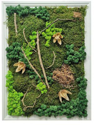 Tablou cu mix de muschi si licheni stabilizați – platmoss, raindeermoss