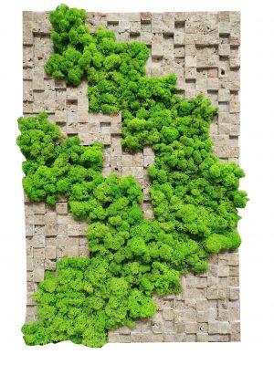 Tablou cu mix de licheni stabilizați si mozaic travertin 3D
